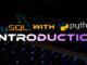 Python MySQL